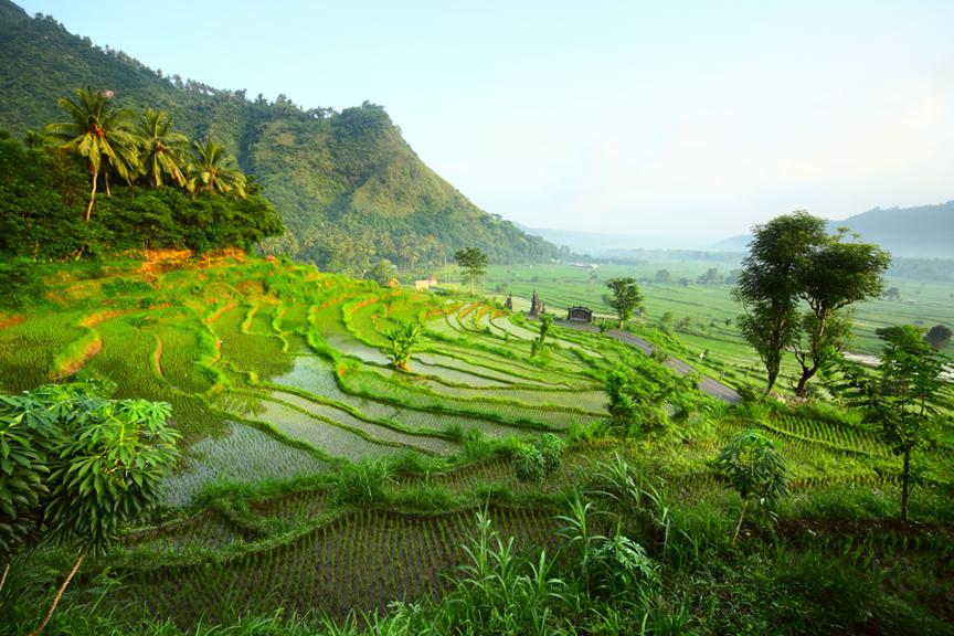 Pigios kelionės į Balio salą