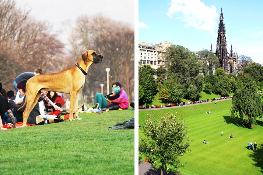 Edinburgas pigūs skrydžiai, parkas