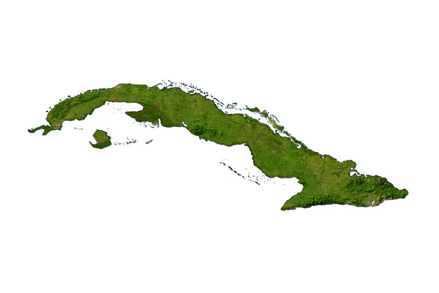 Kuba krokodilas
