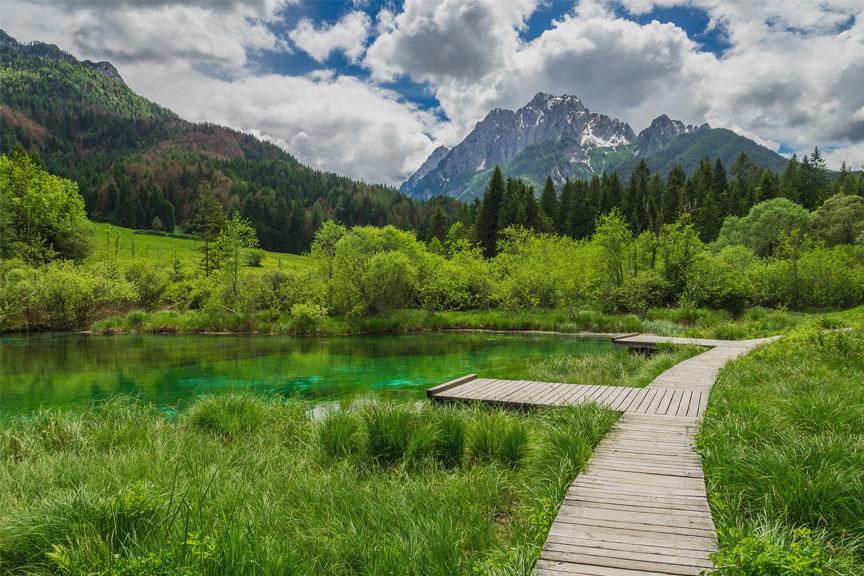 Zelenci gamtos rezervatas Slovėnija