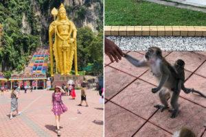 Batu Caves, beždžionėlė, Malaizija, Kvala Lumpūras